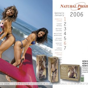 Calendarietto2006-2